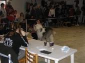 Ceske Budejovice March 2007